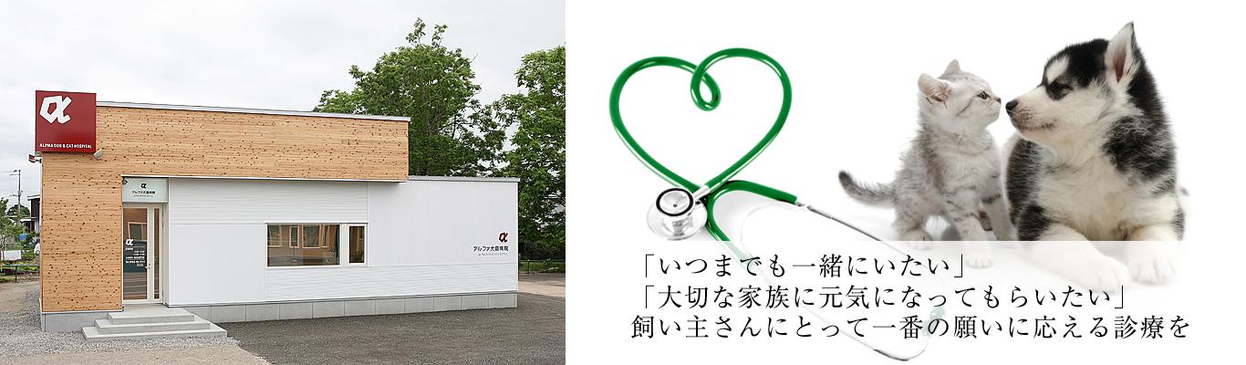 北海道中標津の動物病院、アルファ犬猫病院